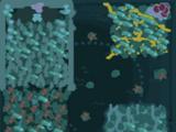 Biome Survival