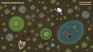 Peatland Bog