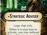 Strategic Adviser