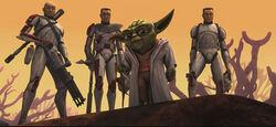 Yoda Clones Rugosa.jpg
