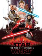 RiseOfSkywalkerGraphicNovelIDWCover