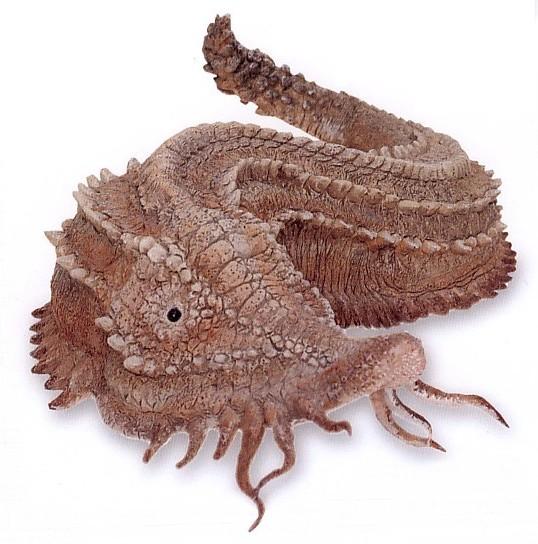 Duracrete Slug