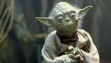 Yoda-Retina 2a7ecc26.jpeg