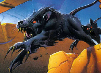 Womp Rat Wookieepedia Fandom When found in the desert, womp rats also hunt in packs, emerging from burrows and swarming their unfortunate victims in a flurry of claws and teeth. womp rat wookieepedia fandom