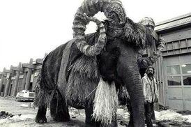 Bantha slon.jpg