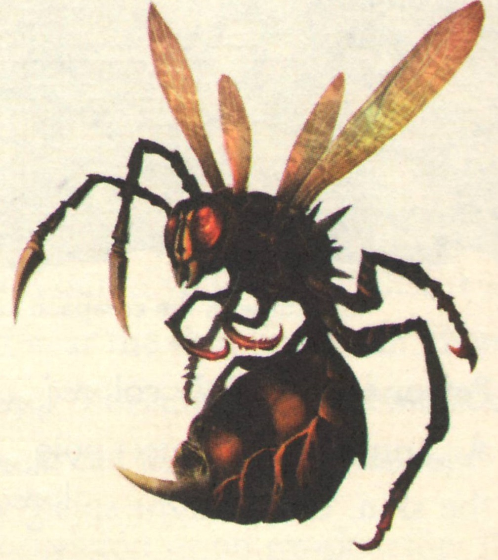 Fire wasp