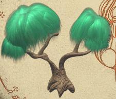 Gimer bush
