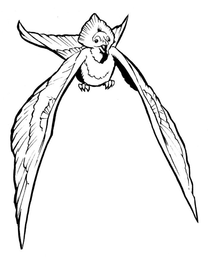 Goa lawah