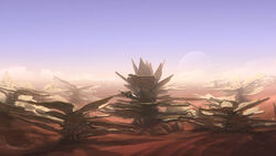Coral Mesa.jpg