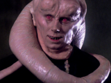 Bib Fortuna/Legends
