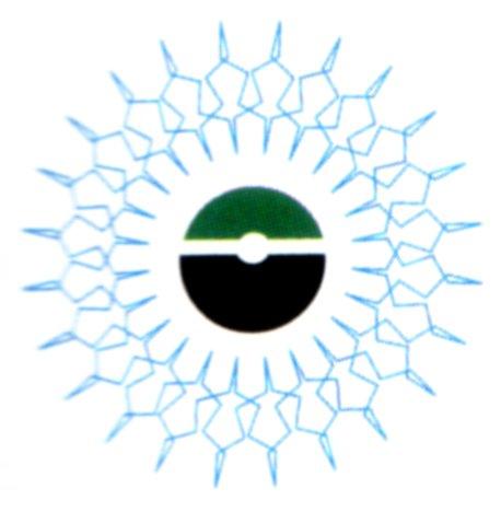 Nubian Design Collective