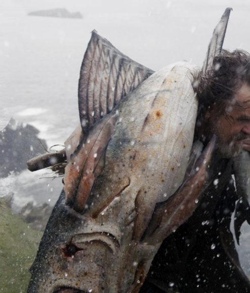 Spetan Channelfish