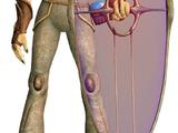 Gungan personal energy shield