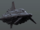 MC95 Star Cruiser variant.png