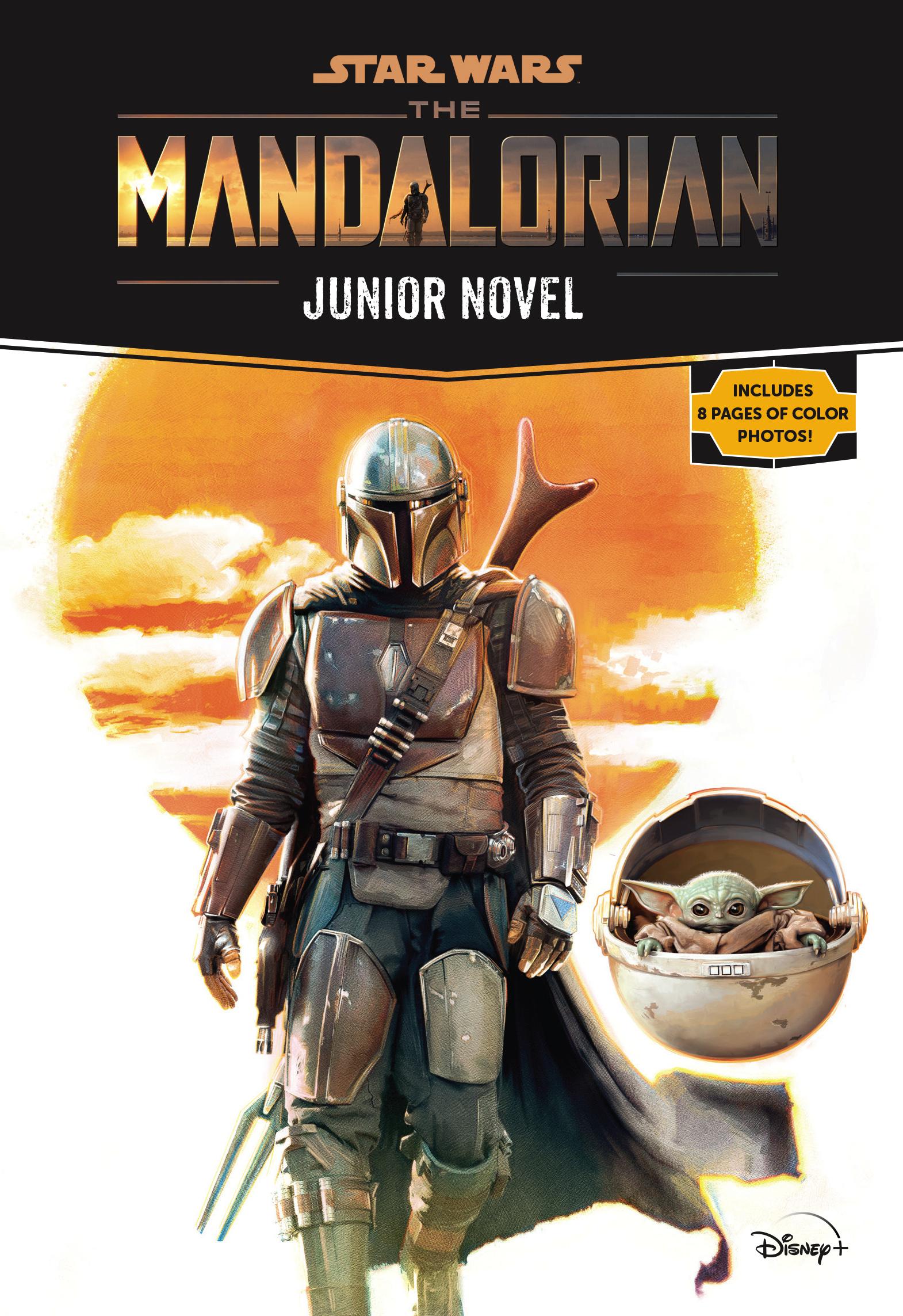 Star Wars: The Mandalorian Junior Novel