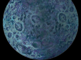 Rishi Moon