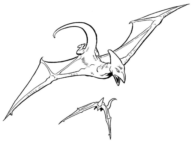 Ammuud Pterosaur
