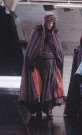 Unidentified Imperial Advisor (purple robe)
