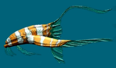 Gumfish
