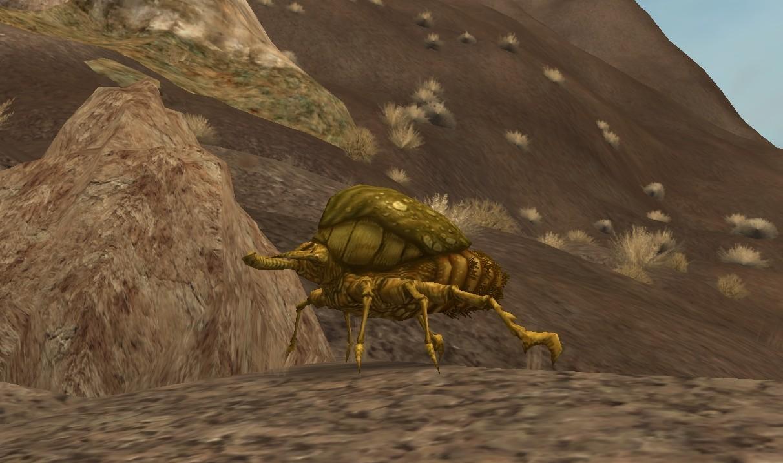 Dune beetle/Legends