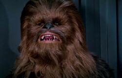 Chewie DS1.jpg
