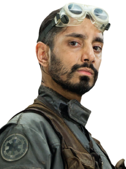 Bodhi Rook.png