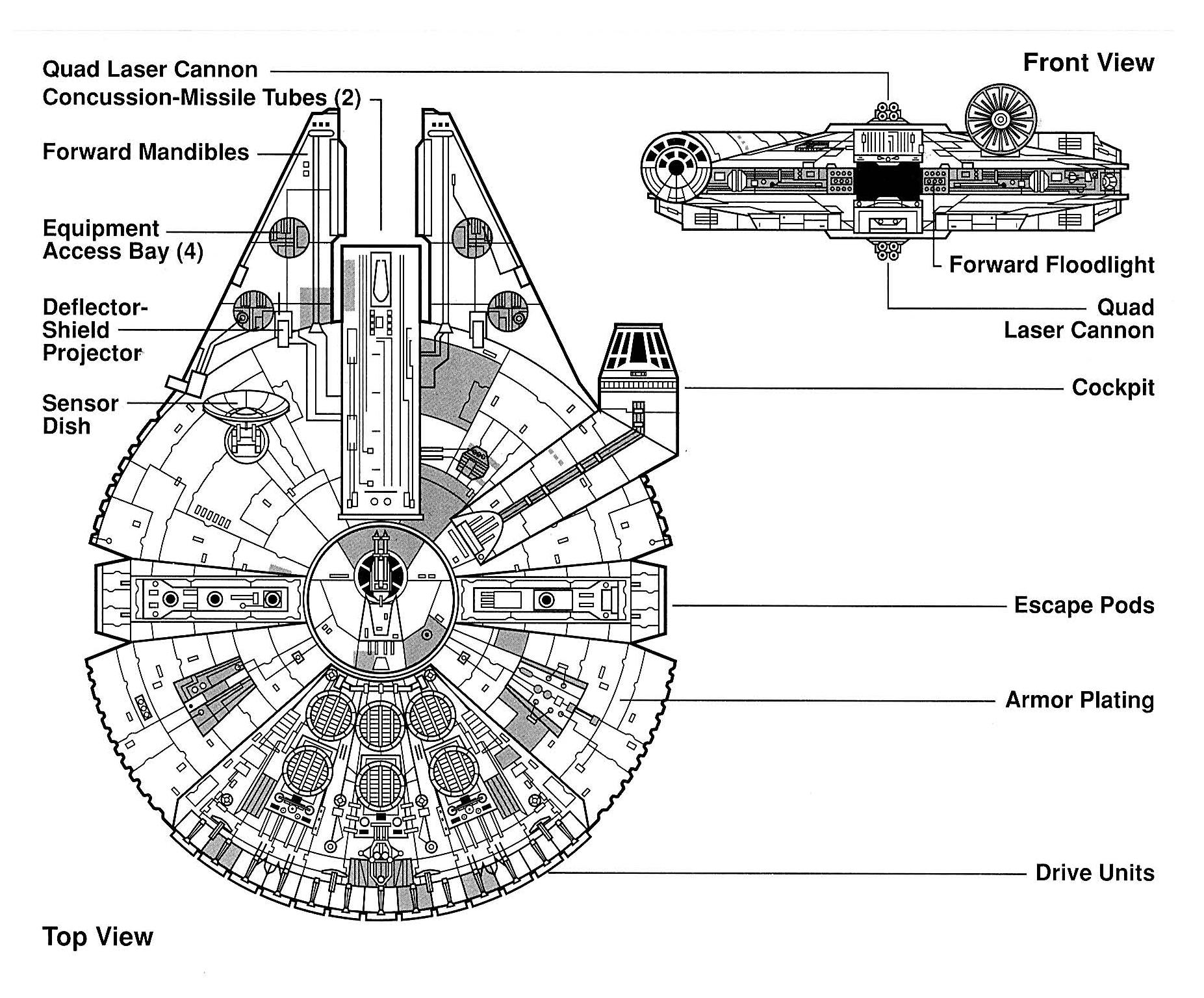 Falcon egvv.jpg