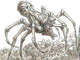 Knobby white spider/Legends