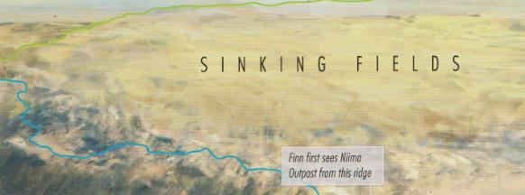 Sinking Fields