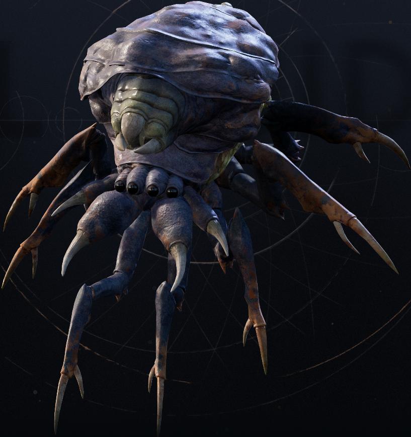 Bane back spider