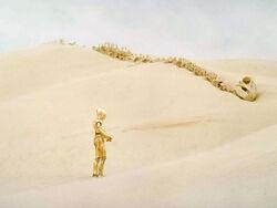 C-3PO i szkielet.jpg
