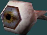 Eye/Legends
