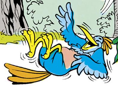 Loonee bird