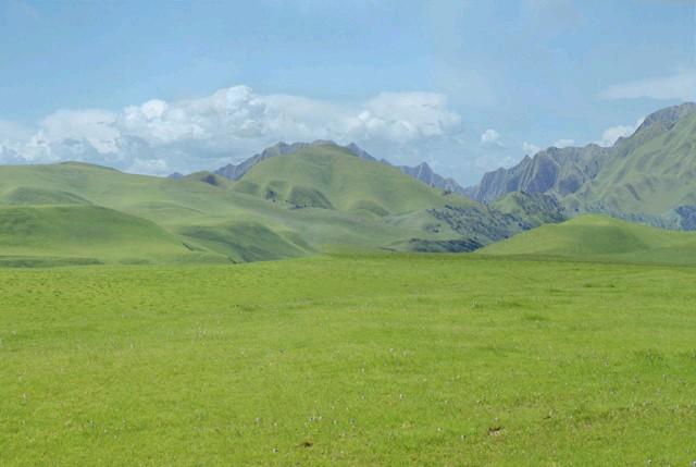 Gallo Mountains