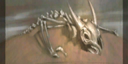KraytDragonSkeleton