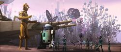 Nomad Droids.jpg