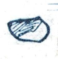 Rhydonium