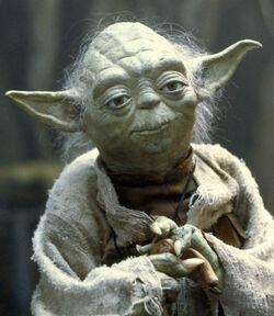 Yoda SWSB.jpg