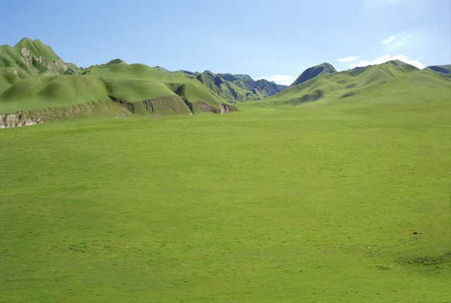 Great Grass Plains