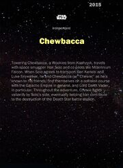 ChewbaccaPilot-2015-Back