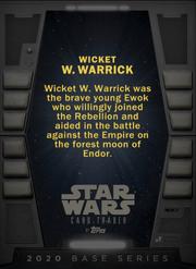 Wicket-2020base-back