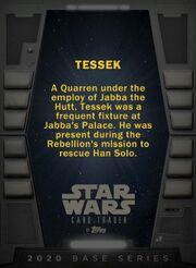 Tessek-Tier1-2020-Back