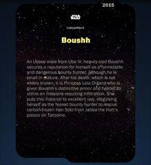 Boushh-2015-Back