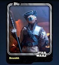 Boushh-2015-Front.jpg