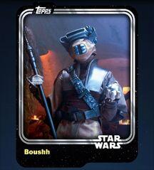 Boushh-2015-Front