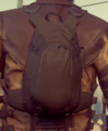 Small Brown and Black Backpack