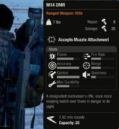 M14 DMR
