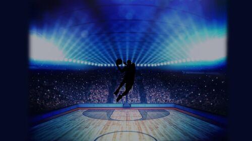 Basketball Pro Management 2015 Artwork 5.jpg