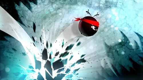 Fly'N Artwork 5.jpg
