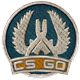 Counter-Strike Global Offensive Badge 2